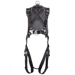 Cirrus WTG Harness