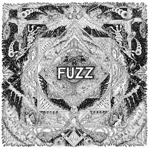 fuzz-500x500