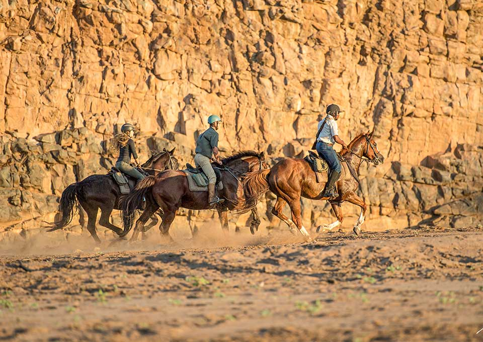 Cantering horses