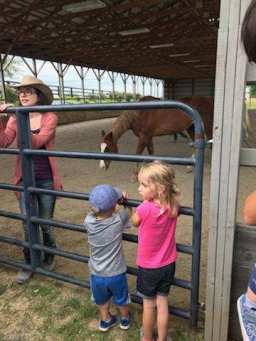 kids on the gate