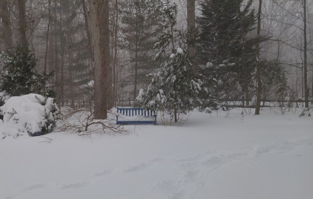 blue-bench-blizzard-800