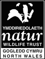 north wales wildlife trust logo