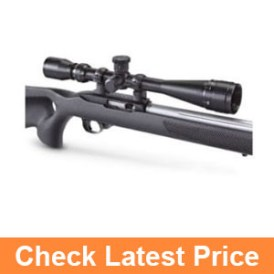 BSA 6-18X40AO Sweet 22 Rifle Scope