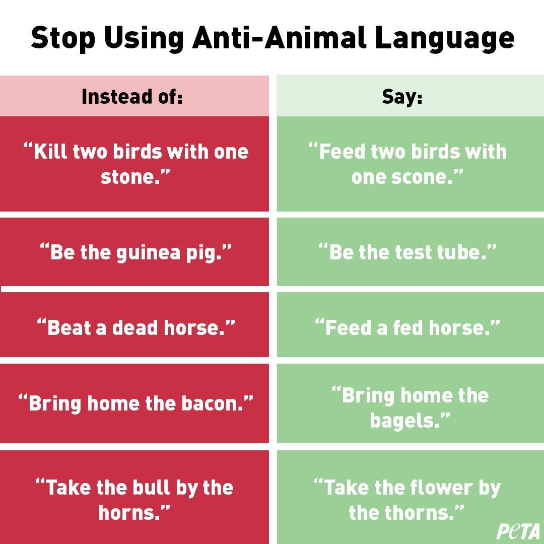 PETA criticized for equating 'anti-animal' language with racism and homophobia