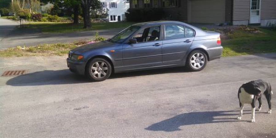 Cheap E46 BMW 325i