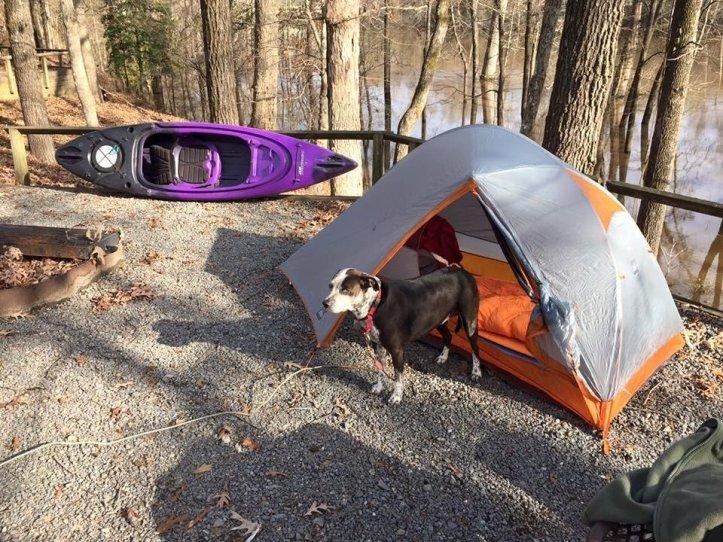 Tent verses hammock camping