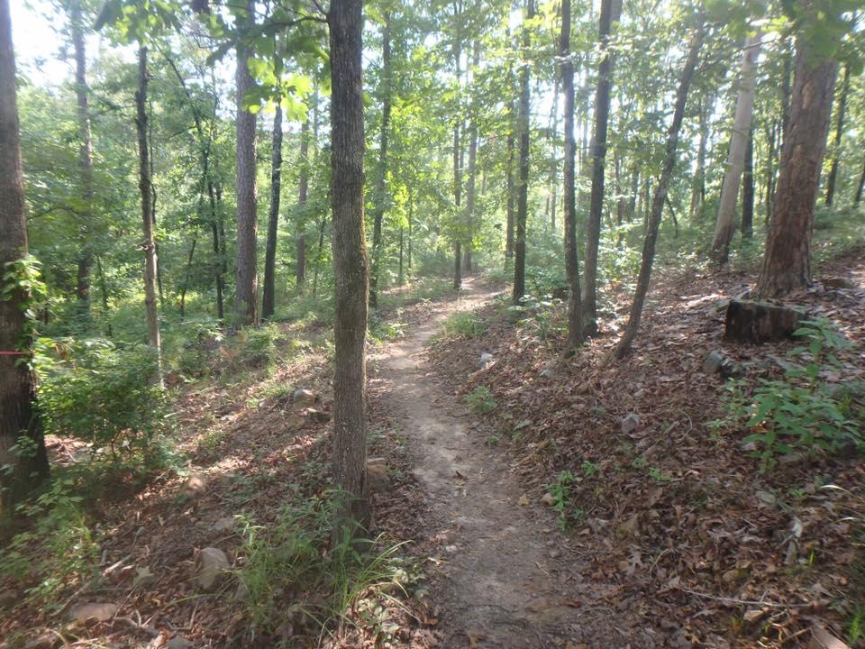 Mountain Biking The White Zone on the Iron Mountain Trail System