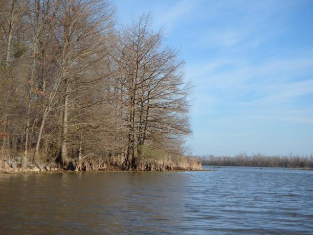 Arkansas Post National Memorial makes for a great day trip to explore the delta region of The Natural State and offers walking, kayaking, and fishing.