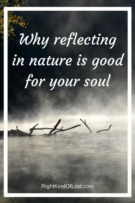 Reflecting in nature is a great way to deal with stress, anxiety, depression, and simply being overwhelmed in life. Nature show us life goes on.