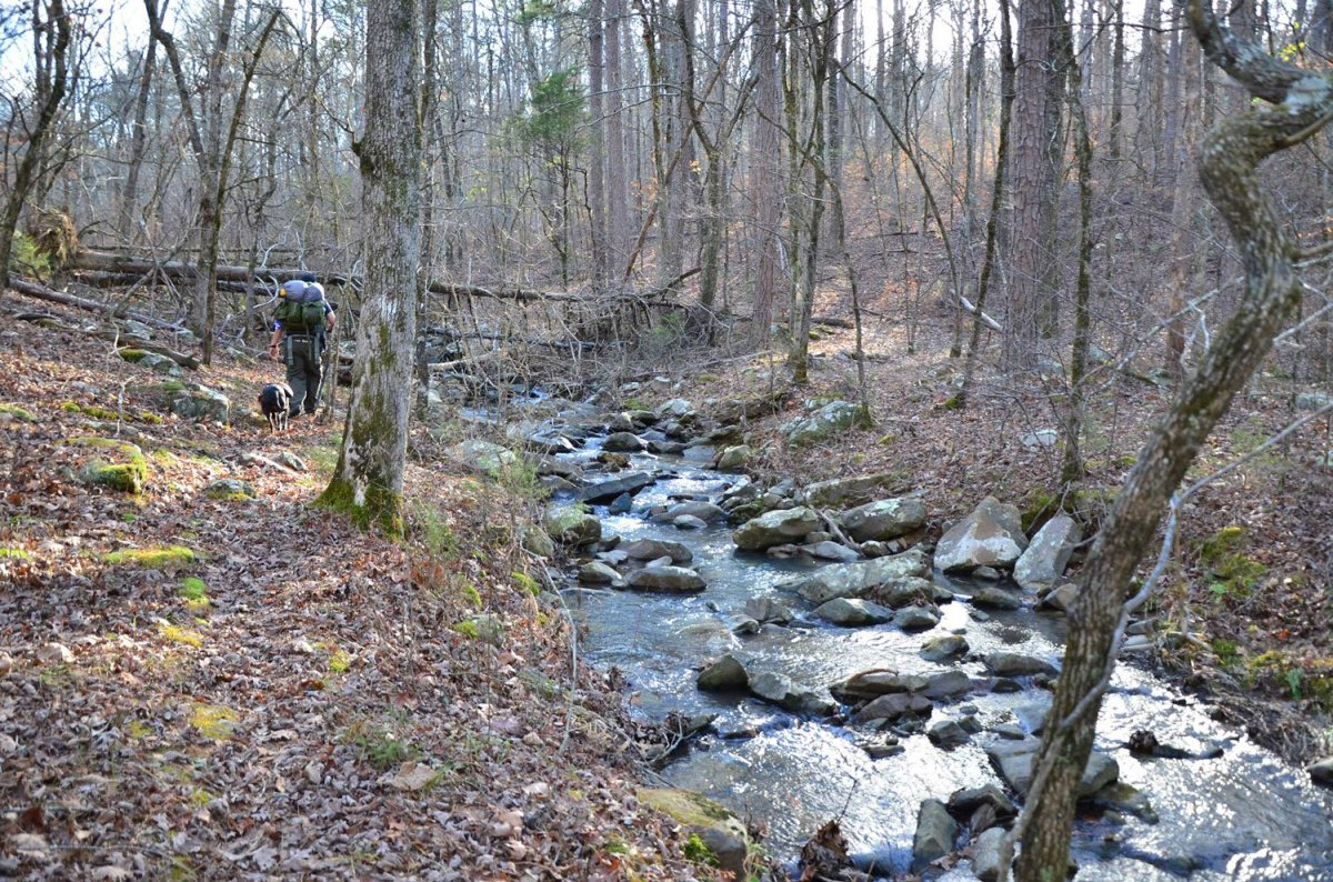 Why winter hiking rocks. Five reasons why I love hiking in the winter in Arkansas over the summer.