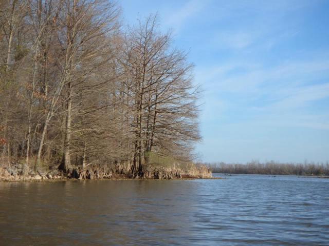 Arkansas Post Water Trail