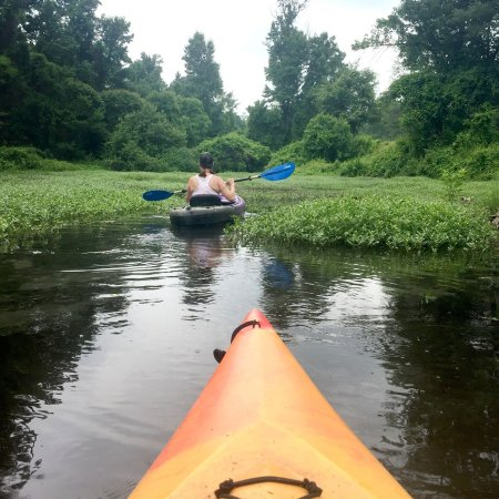 Arkansas Water Trails are a great way to see The Natural State