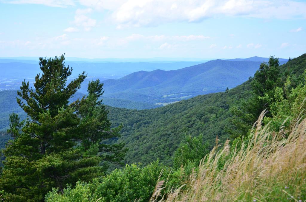 A mountain scene in North Carolina is shown