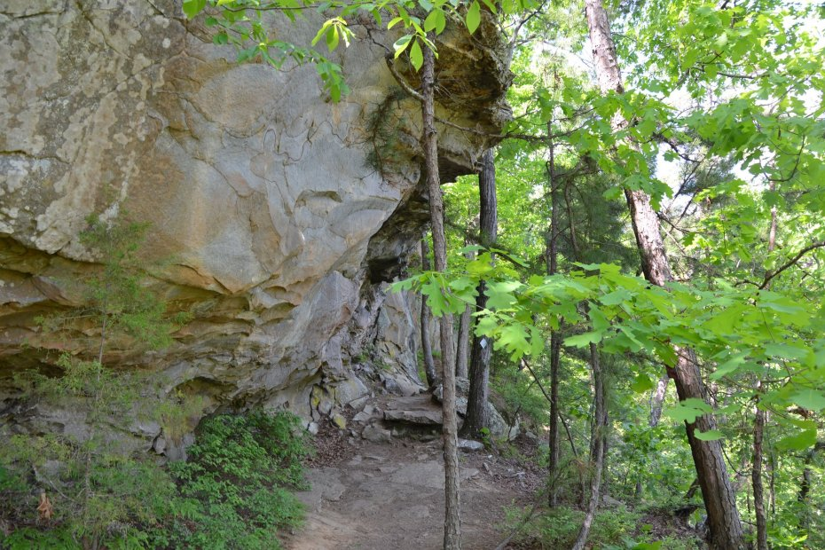 Petit Jean Loop Trail – A shorter alternative to the 12-mile BSA Trail
