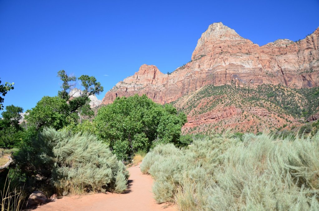 The Watchman Trail at Zion National Park, a great short day hike