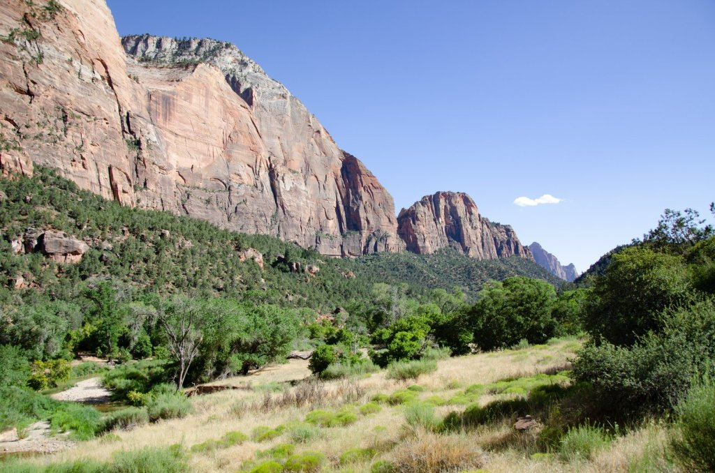 The view of Zion Canyon