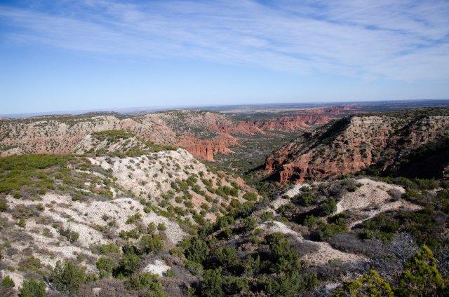 Hiking at Carpock Canyons State Park