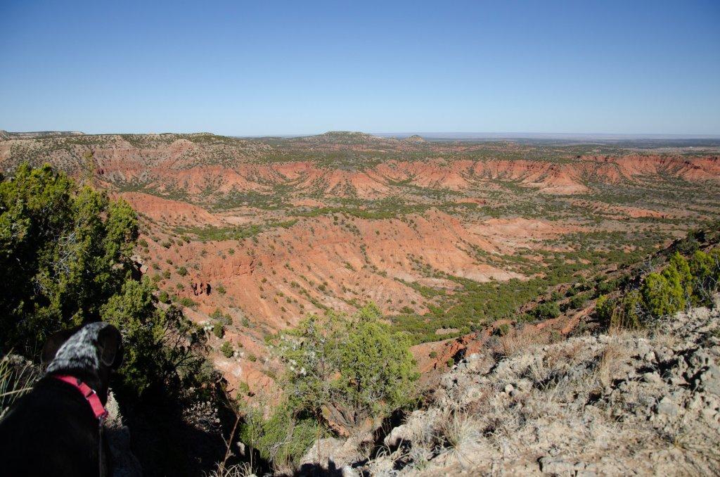 The view to the north is shown on the Caprock Canyons hiking loop