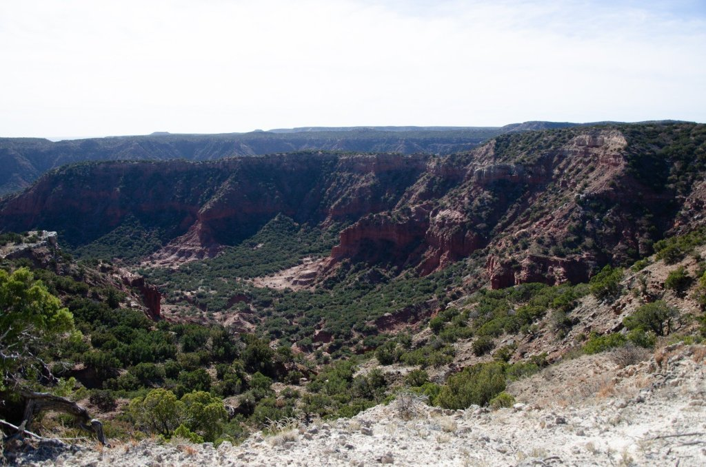 The view is shown from Haynes Ridge Overlook Trail