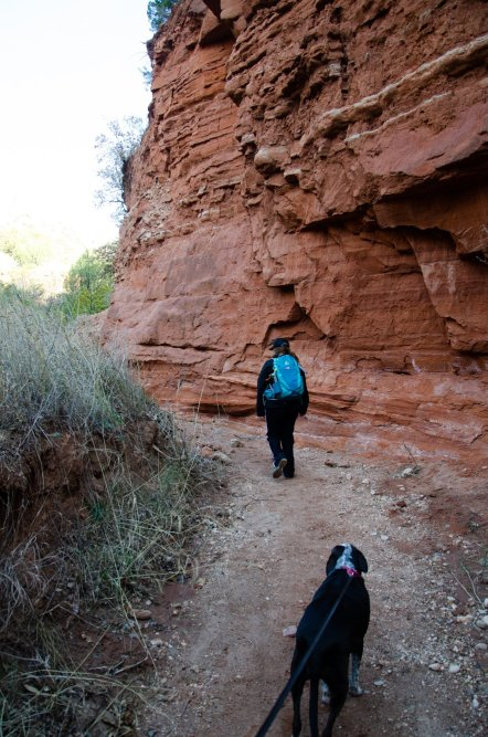 Hiking along the Upper North Prong Trail