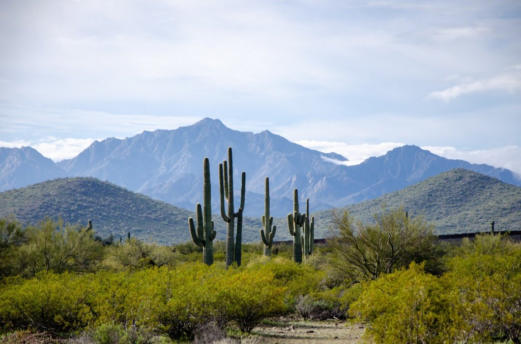 Mountains in Mexico are shown at Organ Pipe Cactus National Monument