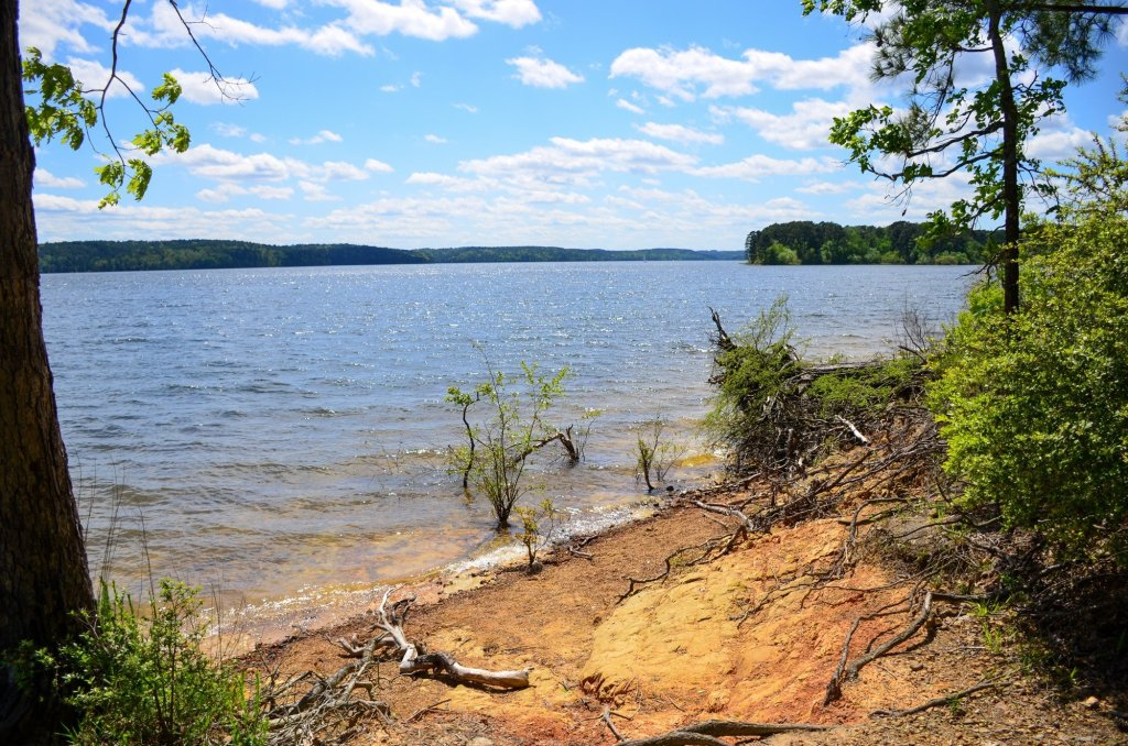 The lake is shown on the Towering Pine Trail while hiking at DeGray Lake State Park