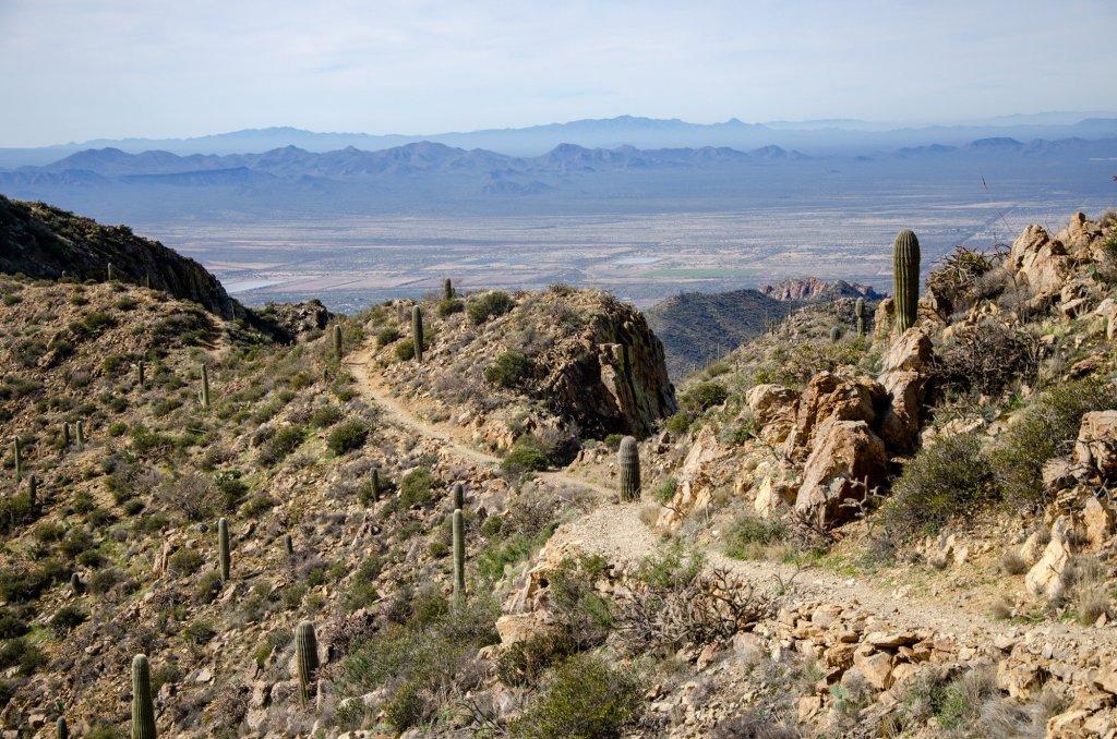 Wasson Peak Trail is shown