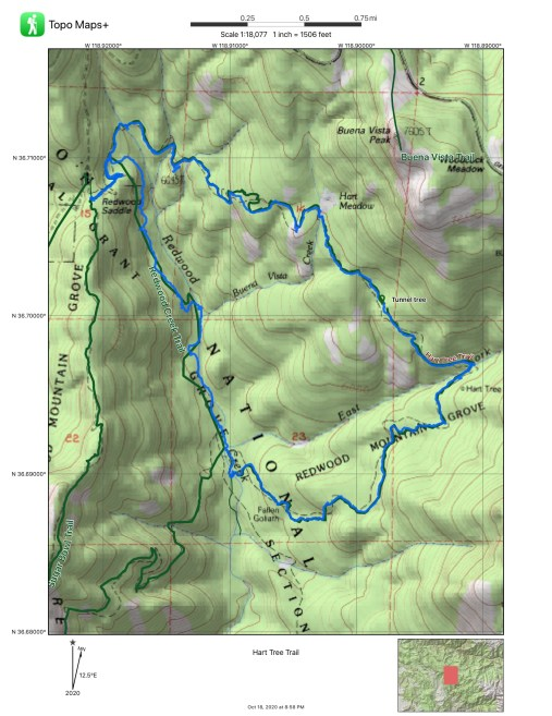 Hart Tree Trail Map