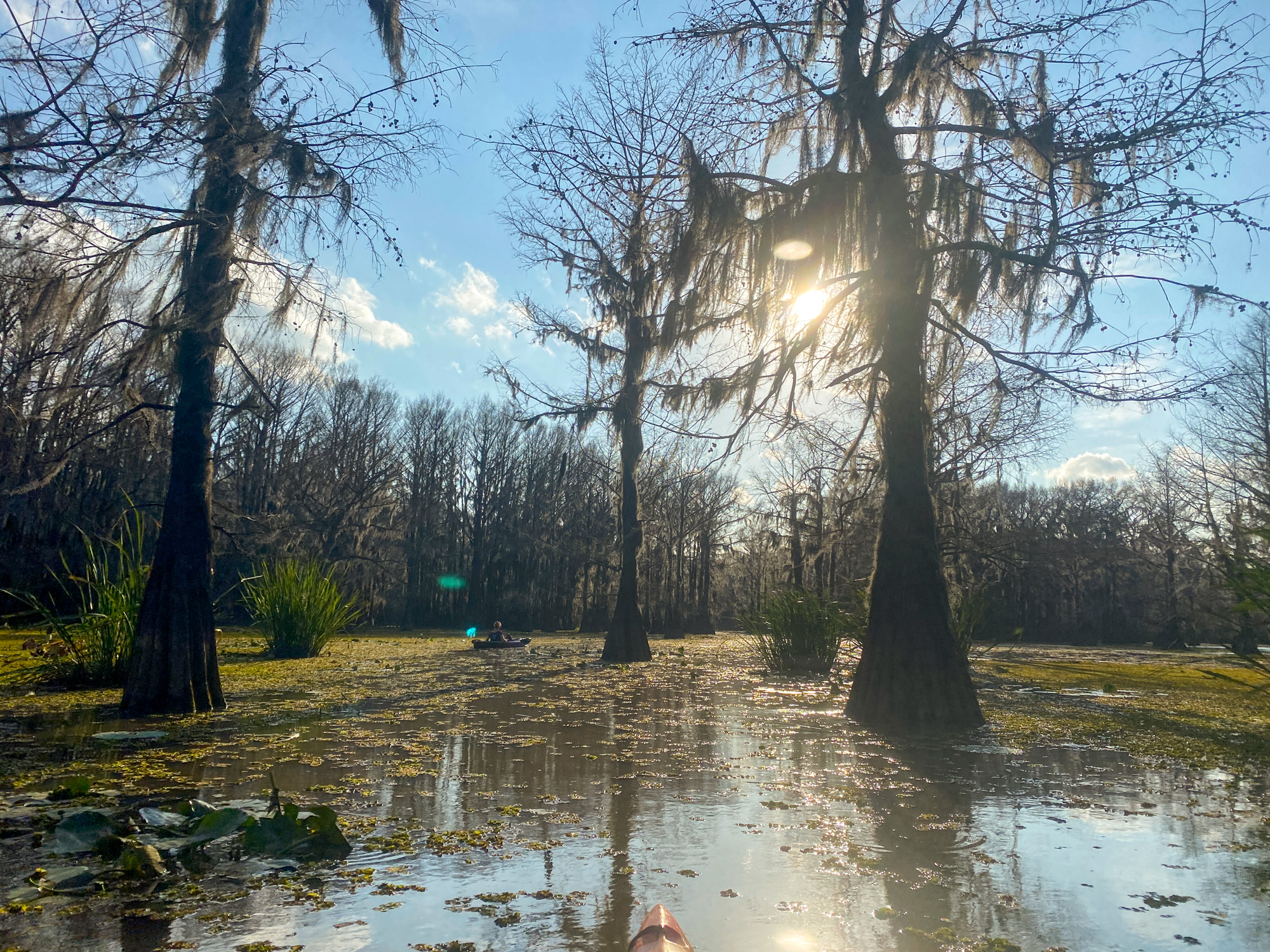 The sun shines through the trees on Hell's Half Acre Paddling Trail