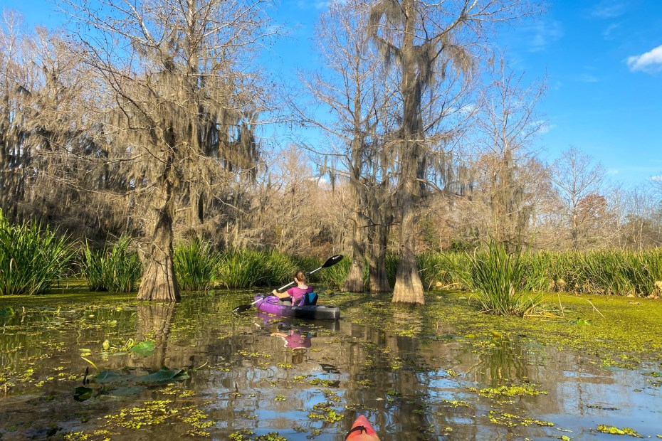 Kayaking Hell's Half Paddle Trail