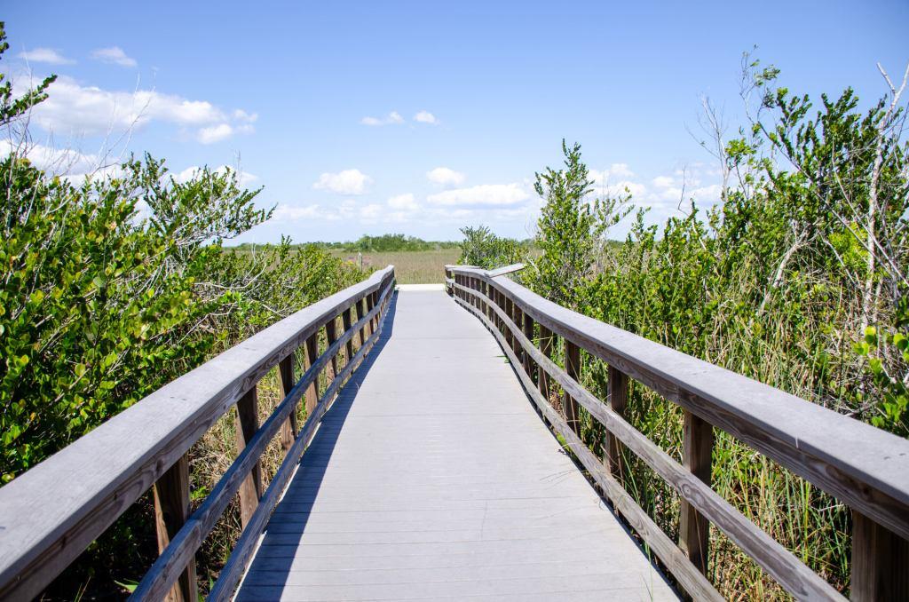 Bobcat Boardwalk is shown along the Shark Valley Trails Loop