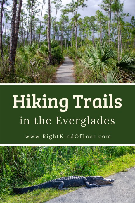 Everglades National Park may not be known for its hiking trails, but don't let that discourage you from bringing your hiking boots when you visit the park. The park offers some great short trails or some longer ones for those who want to explore a little.