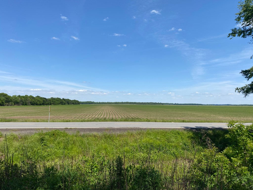 A field is shown from Watson to Rohwer on the Delta Heritage Trail