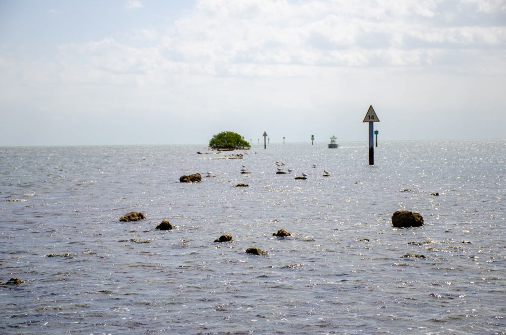 Biscayne Bay is shown