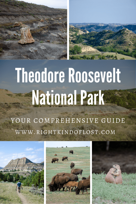 Theodore Roosevelt National Park is a hidden gem. It showcases the North Dakota Badlands, Great Plains, and some really amazing wildlife.