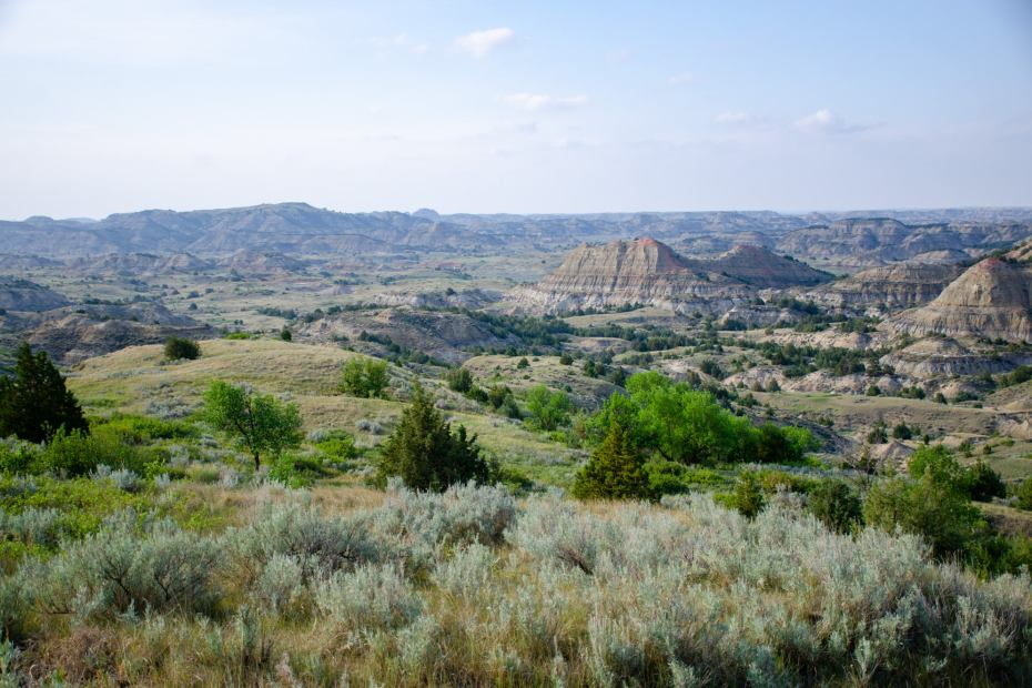 Exploring Theodore Roosevelt National Park