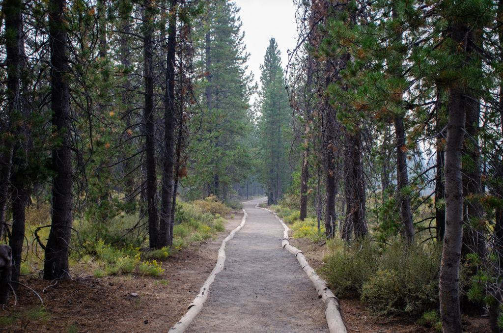 The trail for the Pinnacles is shown