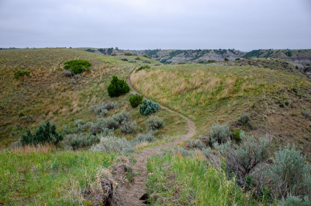 Hiking along the petrifed forest loop at Theodore Roosevelt National Park