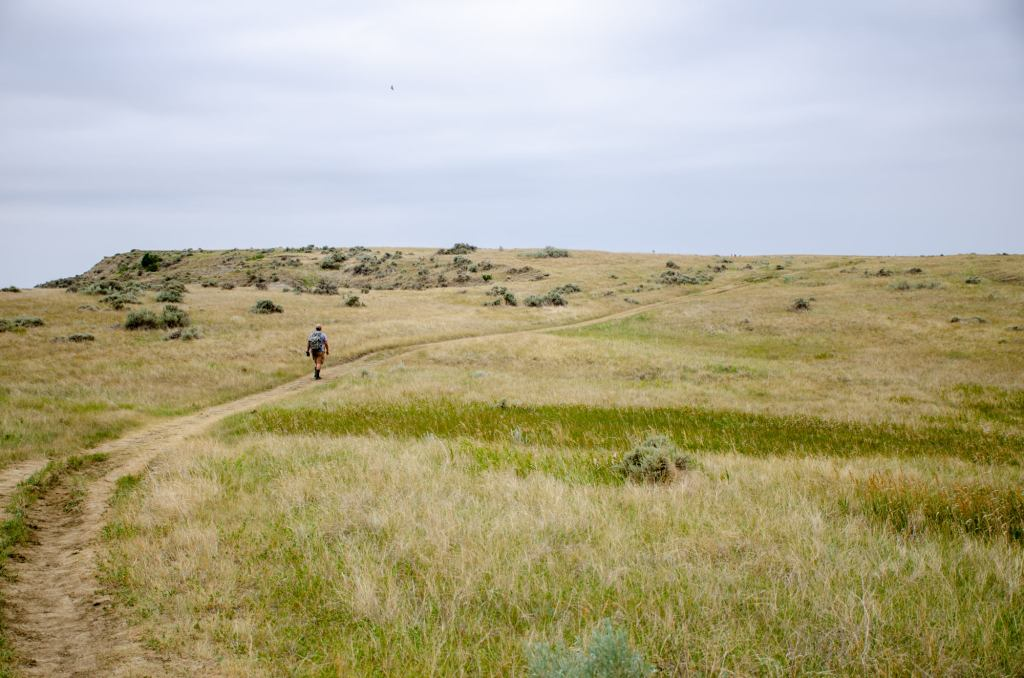 A man hikes along the Petrified Forest Loop at Theodore Roosevelt National Park