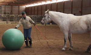 Sandee and Friday practice keeping their eyes on the ball. [photo]