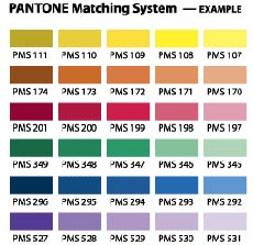 pantone color swatches for graphic design and printing