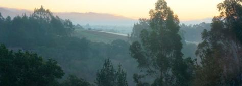 Morning view from S&P Ranch in Watsonville, CA