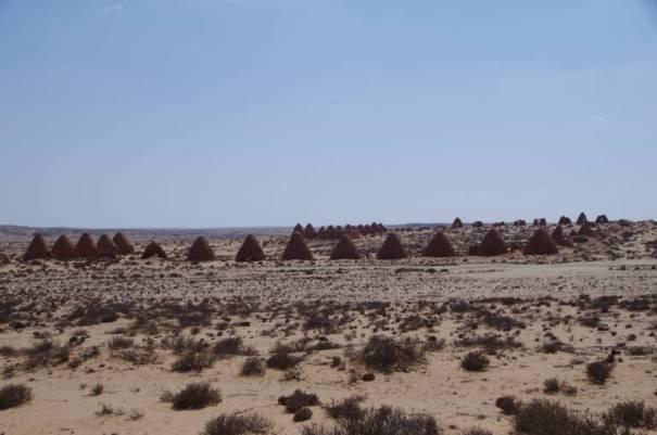 Truppenlager aus dem Sahara-Konflikt?