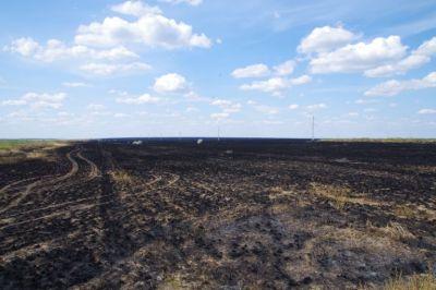 Immer wieder zu sehen - quadratkilometergroße abgefackelte Brandflächen der Felder; welch ein Unsinn!