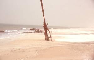 Reste eines Wracks unterm Strand