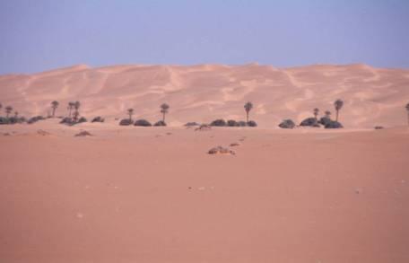 Impression von der Sandwüste bei Idri