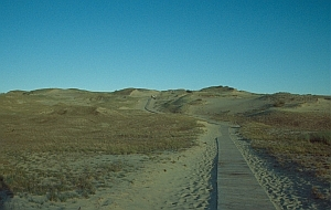 Weg zu den grauen Dünen