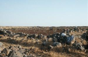 "Auf dem Weg nach Mallah - ""Basaltfelder"""