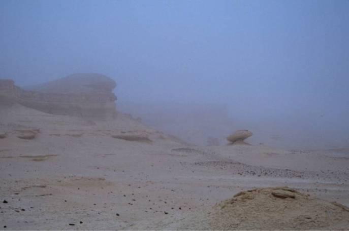 Dicker Nebel am Morgen