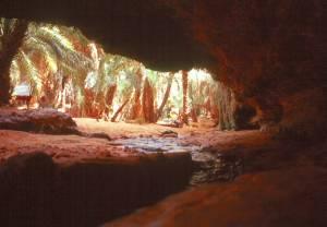 """Blick aus der """"tropfenden"""" Höhle"""